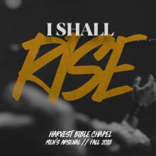 I Shall Rise